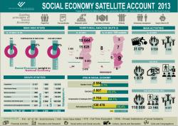 Social Economy Satellite Account 2013