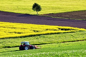 Agricultural income is expected to increase 0.6%
